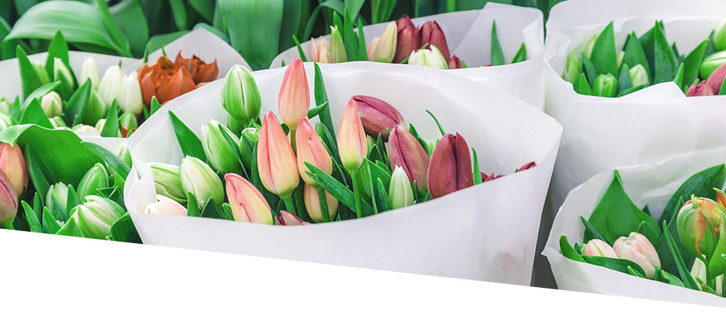 ERP flowers and plants now linked directly and quickly to NGM